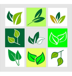 Icons of green leaves vector image