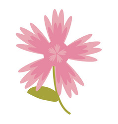 Pink flower natural image vector
