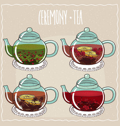 Set of different brewed flower and berry teas vector