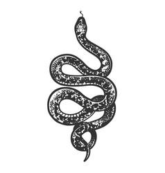 Snake tattoo sketch vector