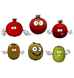 Tropical kiwi and pomegranate fruits vector image