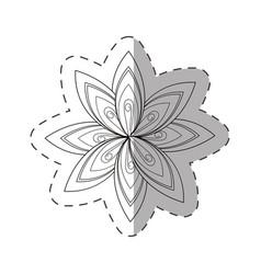 Flower aster decoration image cut line vector