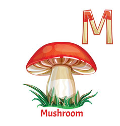 Alphabet letter m coloring page mushroom vector