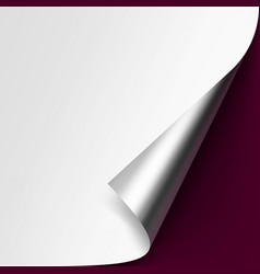 Curled metallic corner white paper on background vector