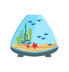 Ornamental fishes in aquarium of cone shape water vector