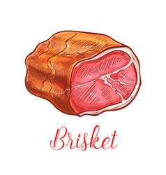 Brisket bacon meat sketch isolated icon vector