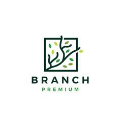 three branch square leaf tree logo icon vector image
