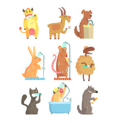 funny animals taking a shower and washing set for vector image vector image