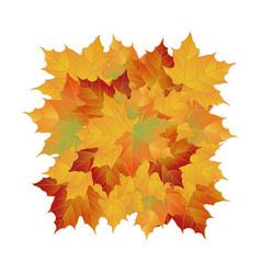 Autumn fallen leaves leafs element floral vector