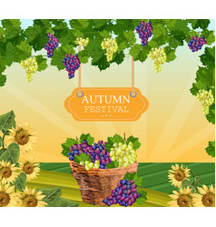 Autumn festival wood sign wine grapes vector