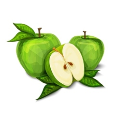 Green natural organic apple fruit vector