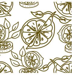 lemon fruit pattern seamless template vector image
