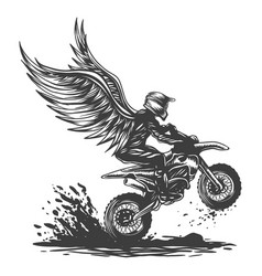 motocross wing vector image