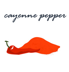 Red cayenne pepper powder vector