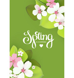 spring background with flowers and lettering vector image