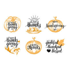Thanksgiving lettering with sketches vector