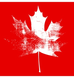 Grunge Maple Leaf White vector image vector image