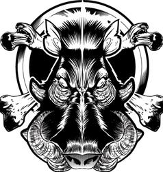wild bore face vector image vector image