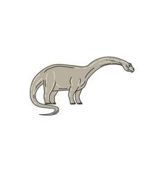 brontosaurus dinosaur looking down mono line vector image