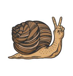 Fantastic snail hand animal sketch engraving vector