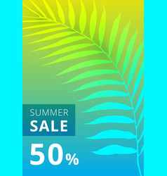 summer sale banner palm leaves colorful vector image