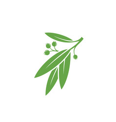 green branch vector image vector image