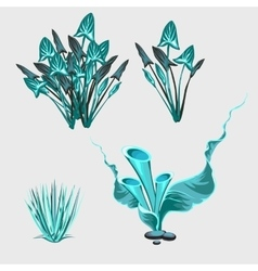 Blue underwater sea plants vector