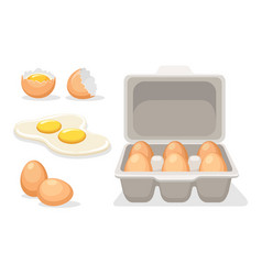 catroon broken chicken eggs vector image