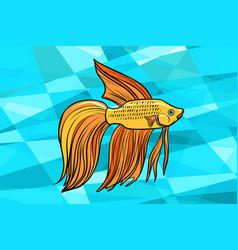 Cockerel aquarium fish vector