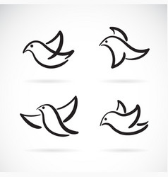 collection hand drawn doodle style birds on vector image