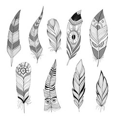 Set feathers vector