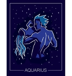 Zodiac sign Aquarius on night starry sky vector image