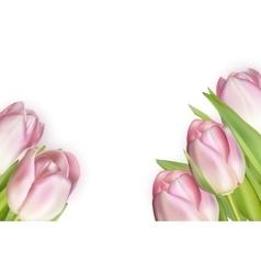 Beautiful bouquet of pink tulips EPS 10 vector image vector image