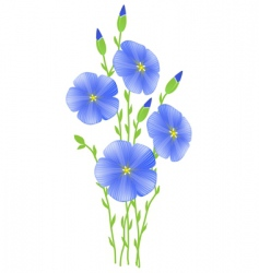Flower of flax lignum situates vector