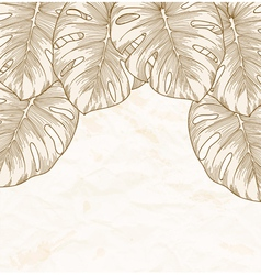 background Old crumpled paper with leaves Monstera vector image
