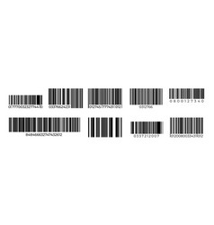 barcodes product identification stripped sign vector image