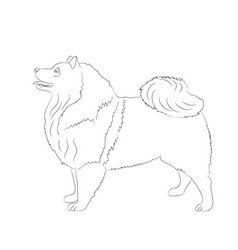dog stands lines vector image