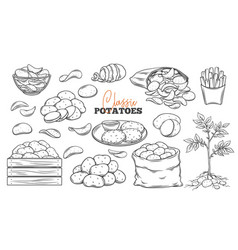 Potato products outline icons set vector