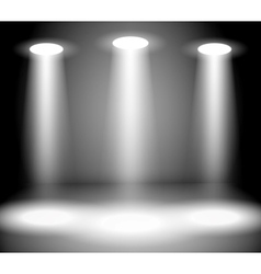 Reflector Lights vector image vector image
