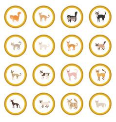cat icon circle vector image