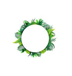 a round frame tropical leaves around a white vector image