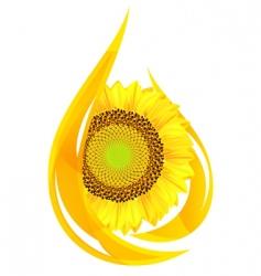 sunflower oil vector image