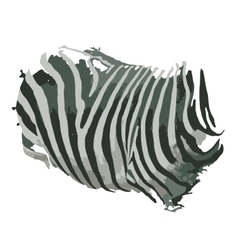 Zebra print for your design vector image