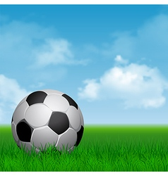 Soccer on the grass vector image vector image