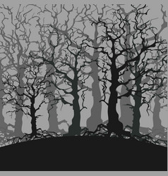 Cartoon gloomy forest background of trees without vector