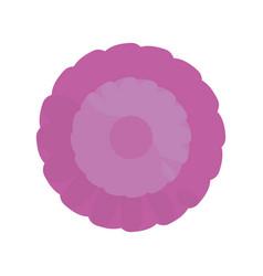 purple flower spring ornament vector image