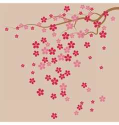 Cherry tree Flowers background vector image vector image
