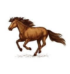 Arabian brown horse running on races sketch vector