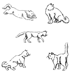 Cats A sketch by hand Pencil drawing vector