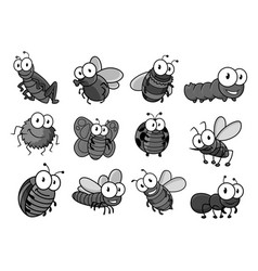Insect cartoon character for childish design vector